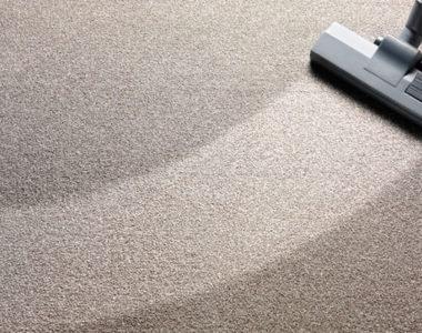 carpet content